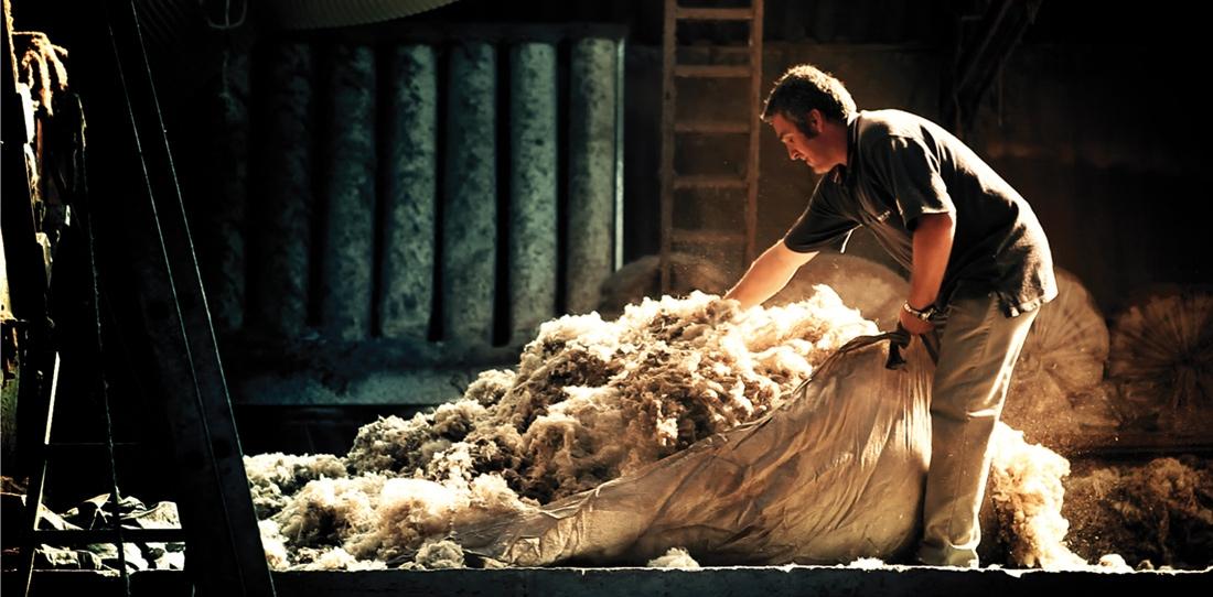 Wool Fleece's washing